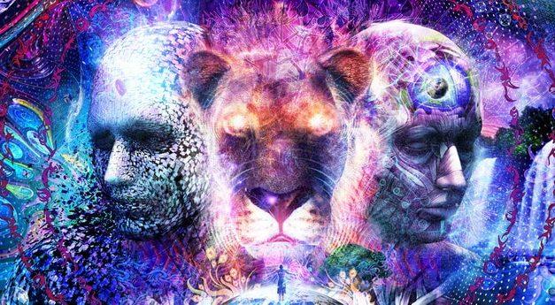 Reinkarnacija – Što određuje koje tijelo dobivamo?