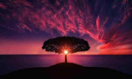 Tri drevna aksioma – OVO je temelj samoozdravljenja!