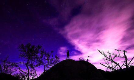 12.05. Poruka Dana – Život ti uvijek vreća ono što daješ