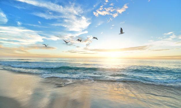 12.05.2020. Poruka Dana – Ni ljubav bez slobode ni sloboda bez ljubavi ne donose stvarno ispunjenje