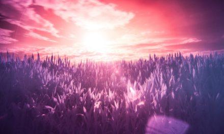 09.08. Poruka Dana – Sve o čemu sanjariš, ne postoji