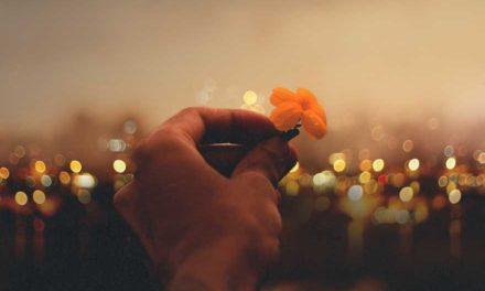 01.03.2019. Poruka Dana – Čovjek se voli dok je živ, ne kada umre