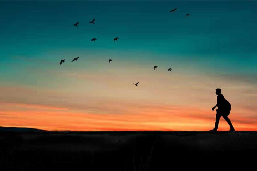 22.04.2019. Poruka Dana – Tek kada se izgubiš, počinješ pronalaziti sebe